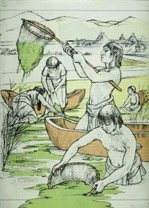 Aztèques récoltant de la spiruline